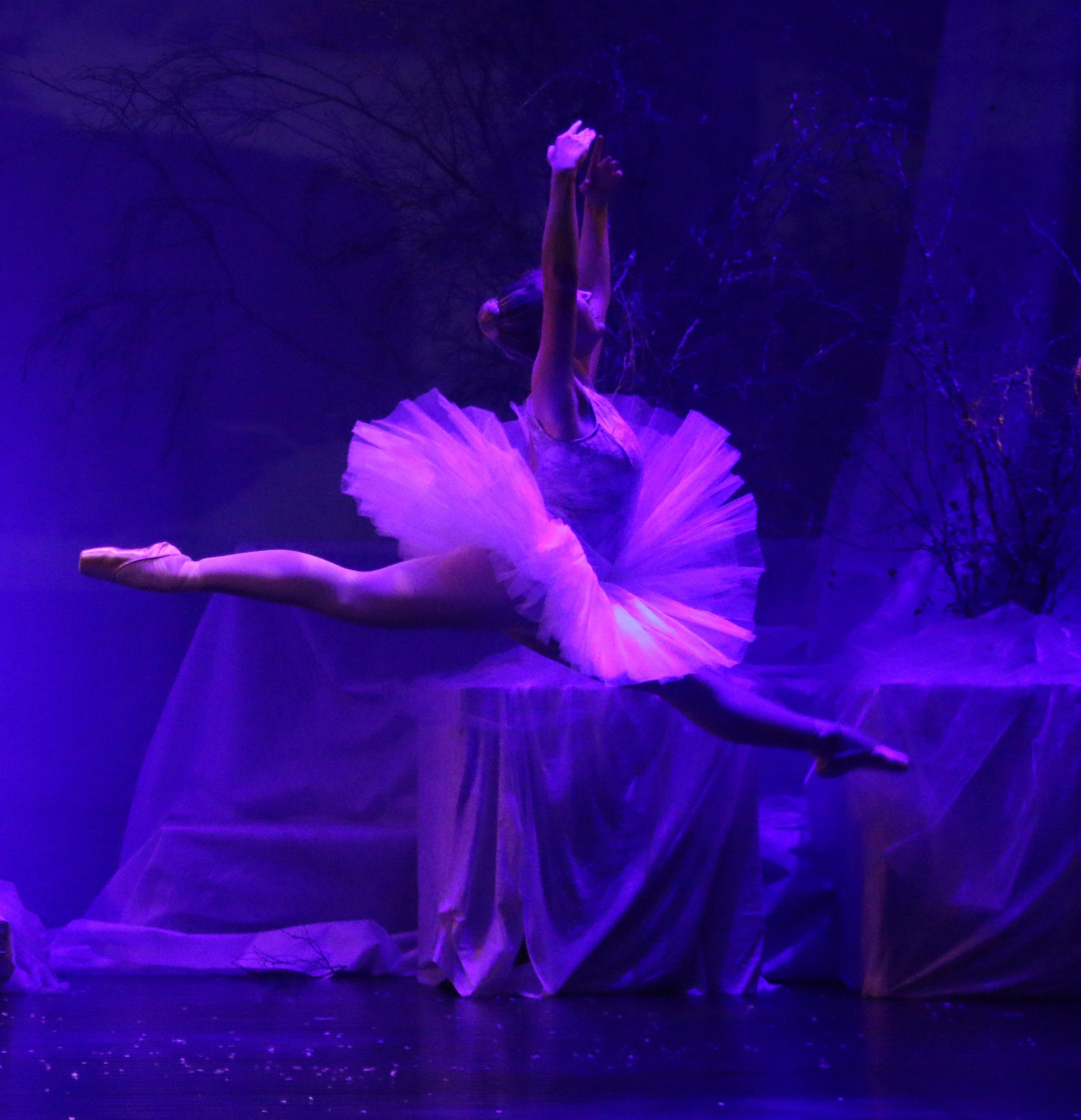 Litt om Dans og Ballett